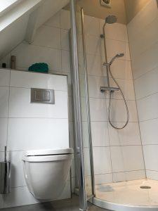 toilet en luxe douchecabine